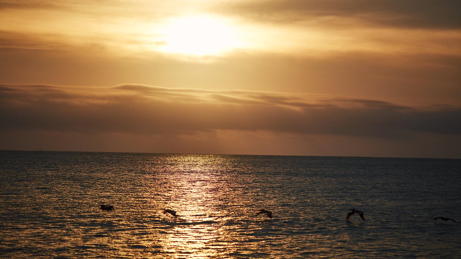 Mar A Cielo, Cabo del Sol